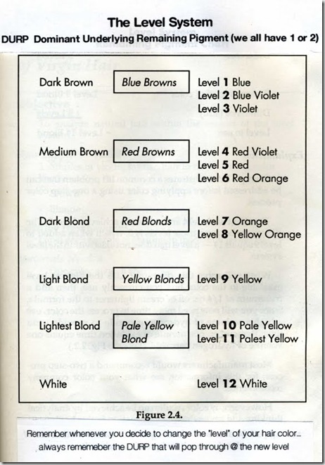 The Level System In Hair Color Simple To Understand